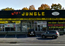 Long Island Pet Shop BTJ's Jungle
