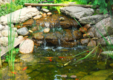Pond Design Long Island