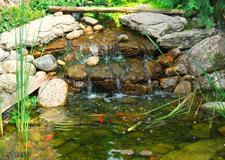 Pond Design Long Island