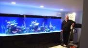 aquariums-custom-fishtanks