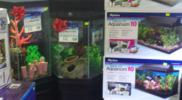 aquariums-fish-tanks
