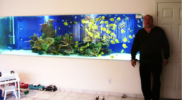 aquariums-long-island-custom-aquariums